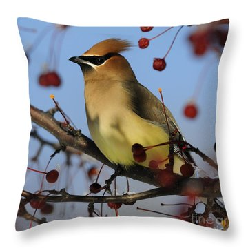 Cedar Waxwing... Throw Pillow