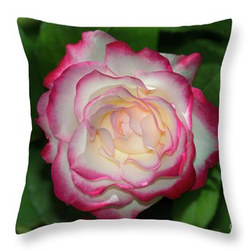 Cherry Parfait Rose Throw Pillow by Glenn Franco Simmons
