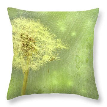 Closeup Of Dandelion With Seeds Throw Pillow