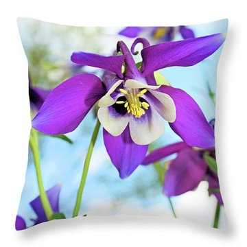 Throw Pillow featuring the photograph Columbine by Kristin Elmquist