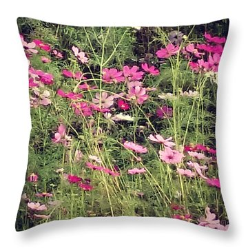 Cosmos Flowers  Throw Pillow by Sobajan Tellfortunes