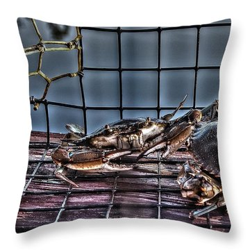 2 Crabs In Trap Throw Pillow