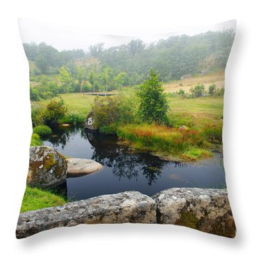 Creek Throw Pillow by Carlos Caetano