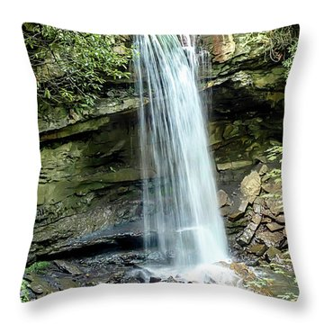 Cucumber Falls Pennsylvania Throw Pillow
