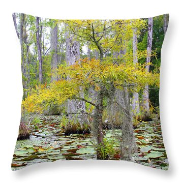 Cypress Gardens Throw Pillow