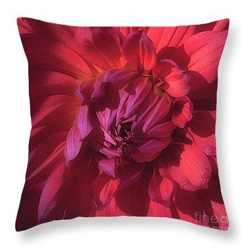 Dahlia 'wyn's King Salmon' Throw Pillow