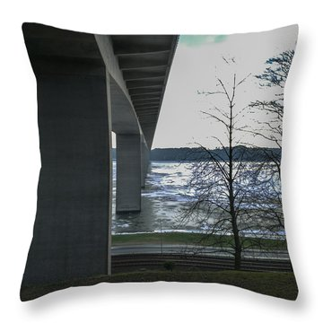 - Throw Pillow