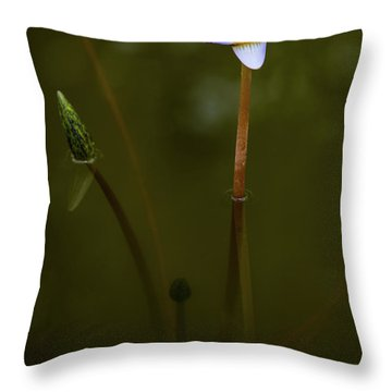 Throw Pillow featuring the photograph Deep Lily Reflection by Dennis Dame