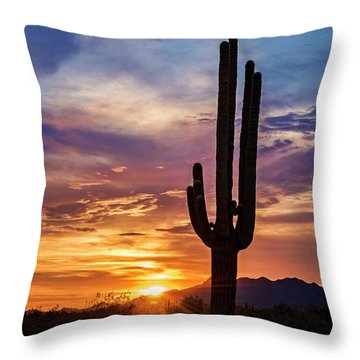 Throw Pillow featuring the photograph Desert Beauty  by Saija Lehtonen