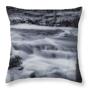 Devils River #1 Throw Pillow