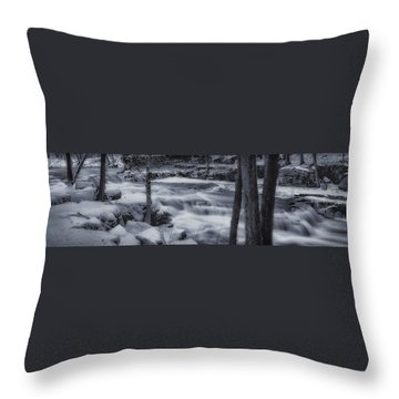 Devils River #1 Throw Pillow