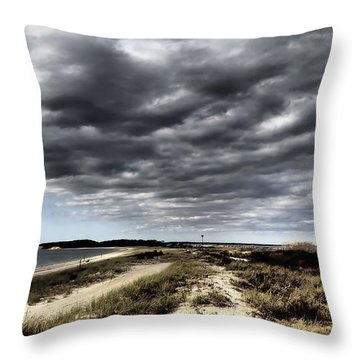 Dramatic Landscape At Elizabeth Morton Throw Pillow