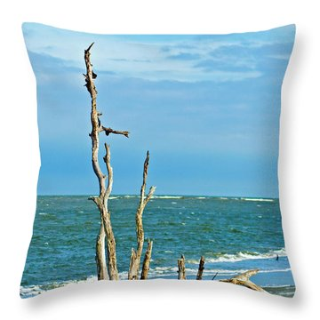 Driftwood On Beach Throw Pillow by Bill Barber