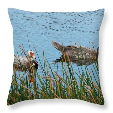 Throw Pillow featuring the photograph 2- Ducks by Joseph Keane