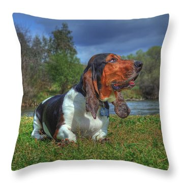Elvis  Throw Pillow by Brian Cross