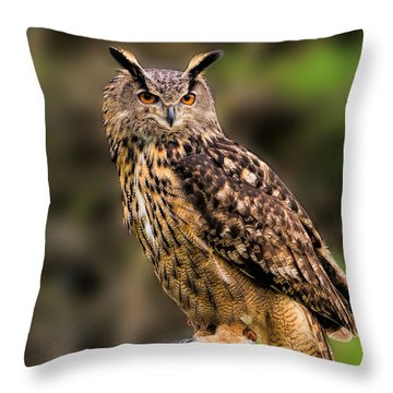 Eurasian Eagle Owl Perched On A Post Throw Pillow