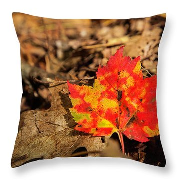 Fall In New Hampshire Throw Pillow