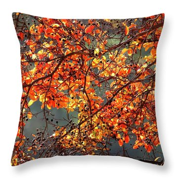 Throw Pillow featuring the photograph Fall Leaves by Nicholas Burningham