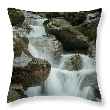 Falls Throw Pillow by Rod Wiens