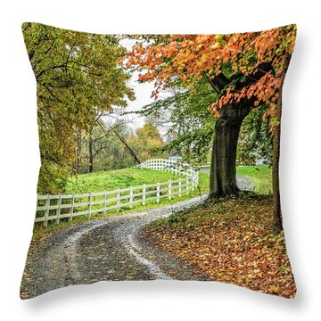 Throw Pillow featuring the photograph Fence Line by David Waldrop