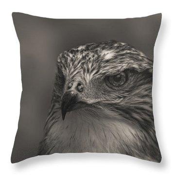 Ferruginous Hawk  Throw Pillow