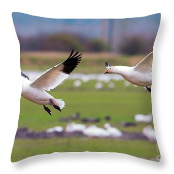 Flaps Down Throw Pillow
