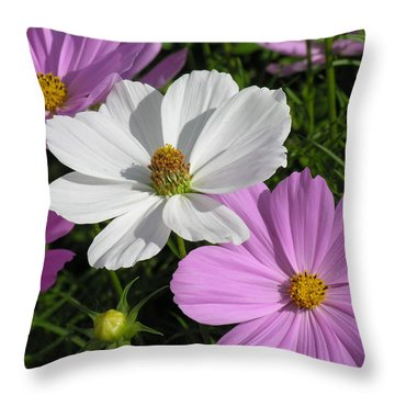 Flowers Throw Pillow by Diane Greco-Lesser