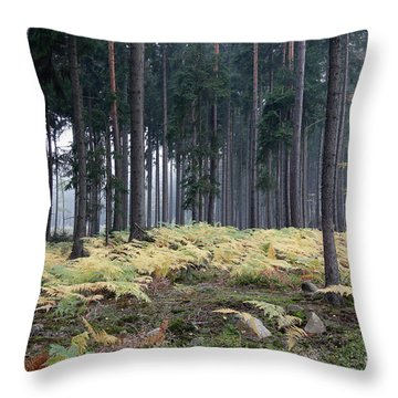 Fog In The Forest With Ferns Throw Pillow by Michal Boubin
