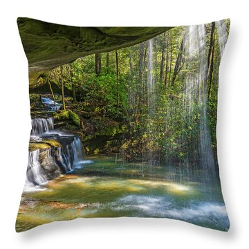 2 For One Falls Throw Pillow