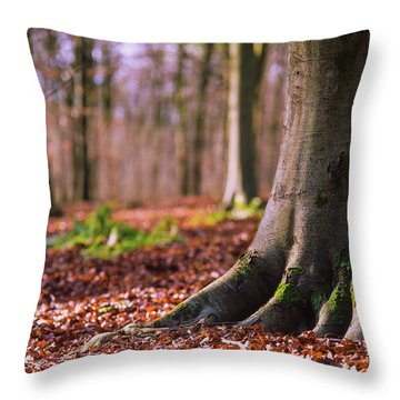 Throw Pillow featuring the photograph Forest Floor by Will Gudgeon