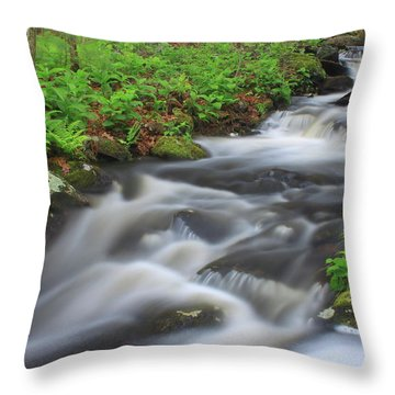 Forest Stream In Spring Throw Pillow by John Burk