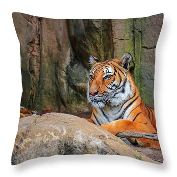 Fort Worth Zoo Tiger Throw Pillow