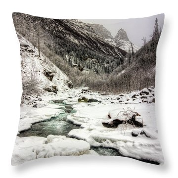 Freeze-up At Dan Creek Throw Pillow