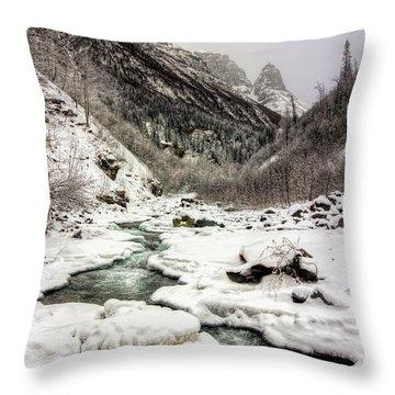 Freeze-up At Dan Creek Throw Pillow
