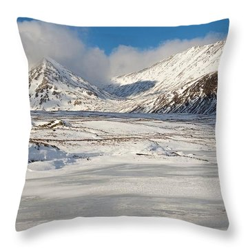 Frozen Rannoch Moor Throw Pillow