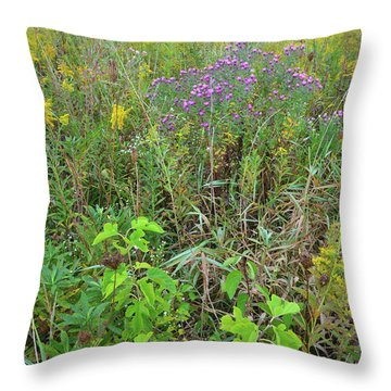 Throw Pillow featuring the photograph Glacial Park Native Prairie by Ray Mathis