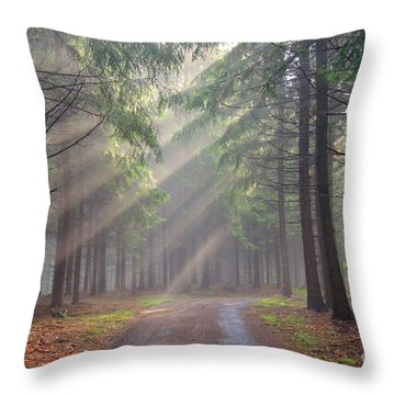 God Beams - Coniferous Forest In Fog Throw Pillow