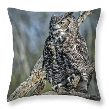 Throw Pillow featuring the photograph Great Horned Owl by Elaine Malott