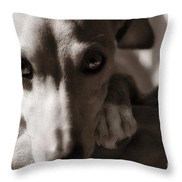 Heart You Italian Greyhound Throw Pillow