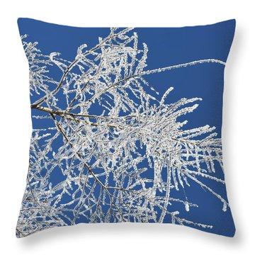 Hoar Frost Throw Pillow