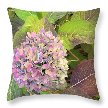 Hydrangea Throw Pillow by Kay Gilley