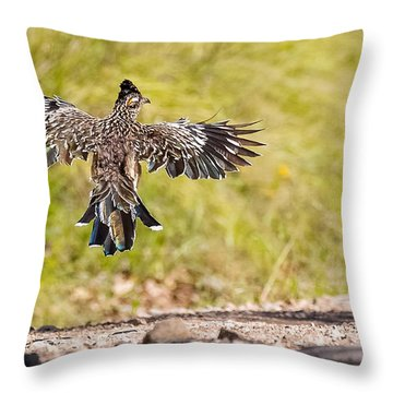 I Wanna Fly Away..... Throw Pillow