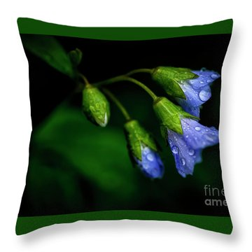 Throw Pillow featuring the photograph Jacobs Ladder by Thomas R Fletcher
