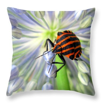 Throw Pillow featuring the photograph June by Irina Hays