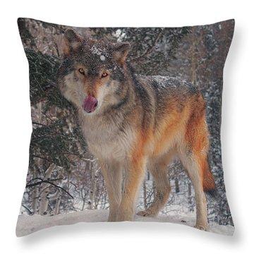 Keara  Throw Pillow