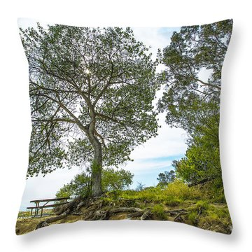 Lake Skinner Regional Park Open-space District Throw Pillow
