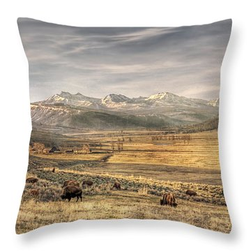 Lamar Valley Throw Pillow