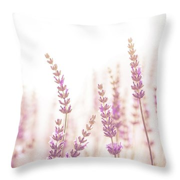 Lavender Flower In The Garden,park,backyard,meadow Blossom In Th Throw Pillow