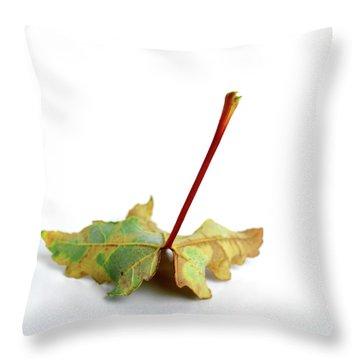 Leaf Throw Pillow by Bernard Jaubert