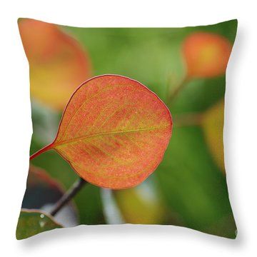 Leaf Throw Pillow by Catherine Lau